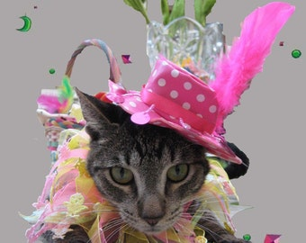 Cat Birthday Hat -Cat Party hat - Cat Birthday Outfit - Cat Party Collar -Cat Birthday Collar -Pink Polka dot Hat with party collar