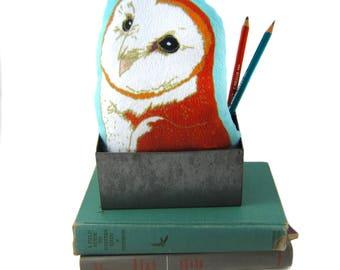 Barn Owl Plush, Mini-Pillow, Stuffie,  Super Soft, Baby Gift, Birder Gift