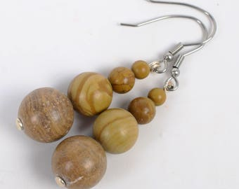 Graduated Jasper/Petrified Wood Earrings  — #001502