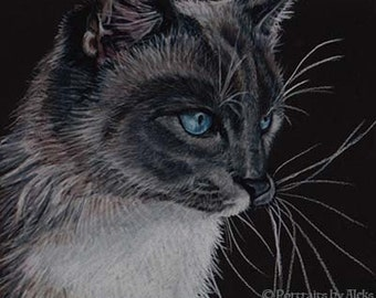 Siamese Cat Art Note Card