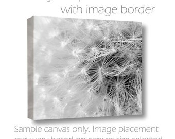 B&W Wall Canvas-Dandelion Photography-Fine Art Gallery Wrap Canvas-Horizontal Wall Art-Abstract Image-Wildflower-8x10/11x14/16x20/20x30