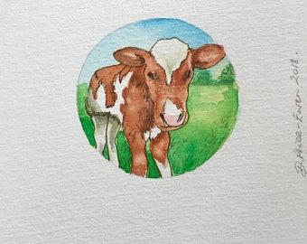 The little calf in the neighbour's paddock - Oamaru, New Zealand