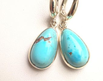 "Rare Turquoise Earrings ""Drops"""