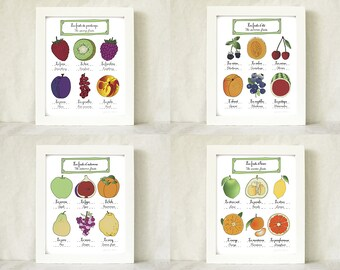 botanical print Kitchen Art - Set of 4 8x10 French Fruits art prints 'French 4 seasons' French Food illustration Gourmet  botanical plate