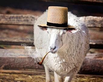 Sheep Portrait, Funny Sheep, Straw Hat, Pipe Smoke, Funny Animal Art, Farm Animals, Sheep Photography, Photography Print, Whimsical Animals
