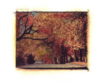 S.E. Tolman Street -  Archival Print of an Original Polaroid Transfer, Signed Limited Edition 8x10 Matted
