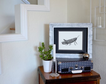 """Grasshopper Freehand Ink Drawing Limited Edition Print, Signed, Numbered 10"""" x 8"""""""