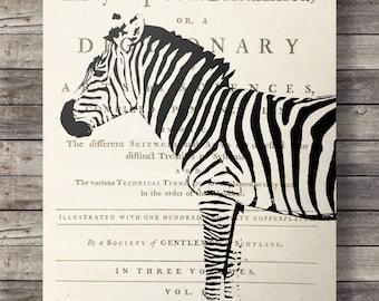 Zebra dictionary print, Printable art, Vintage, dictionary page, zebra print, Printable wall art, zebra vintage, dictionary print, book page