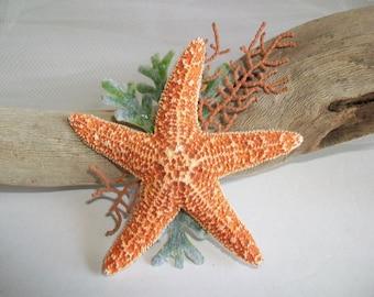 Beach Theme Wedding Orange Starfish Boutonniere or Corsage Pin, Orange Starfish & Sea Fan with Faux Greenery