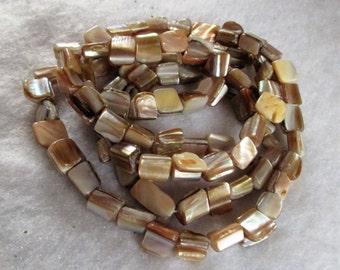 Rainbow Taupe Triangular Shell Beads  ***Full Strand***
