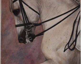 Dressage horse print