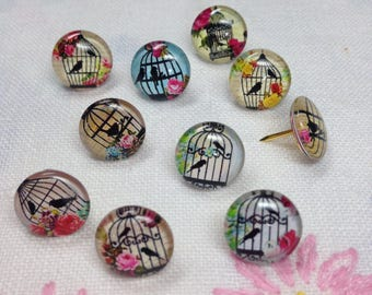Decorative Push Pins, Drawing Pins, Birdcage Push Pins, Thumbtacks, Cork Board Pins, Birdcage Drawing Pins,Teachers Gift