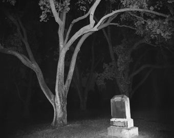 Tombstone and Tree, Evening 11x14