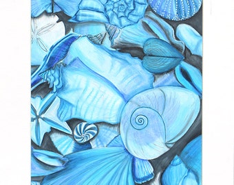 Blue you and all your Shells.