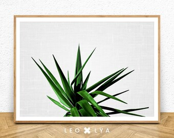 Plant Print Art, Green Leaves Print, Leaf Print, Printable Tropical Leaf, Botanical Art, Plant Wall Art, Tropical Leaf Art Print