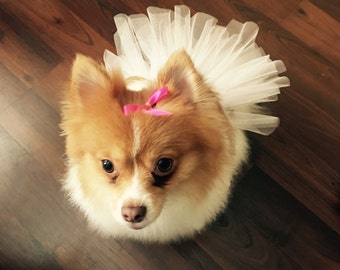 Little Doggie Tutus