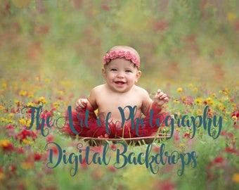 Flower field Digital Backdrop