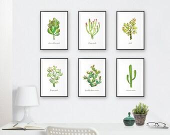 Cactus Succulent Print, Cactus Wall Art Succulent Watercolor, Living Room Wall Art Set 6 Print, Southwest Art Desert Art Botanical Print Set