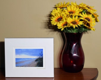 Matted print Colorful Dune with Sea Oats photography print