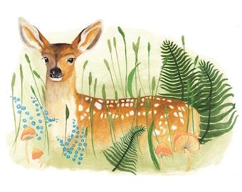 Deer Illustration - Archival Print 11x8
