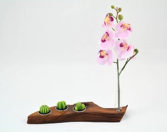Wooden candle holder from Sabina, with three holes for candles and test specimen for flower.