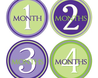 12 Monthly Baby Milestone Waterproof Glossy Stickers - Just Born - Newborn - Weekly stickers available - Design M006-04