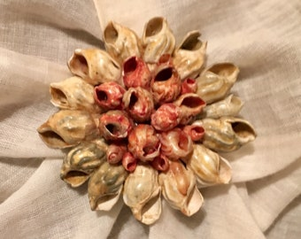 VINTAGE SeaShell Brooch/Pin