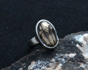 Trilobite Ring - Sterling Silver and Brass Cast of a Genuine Trilobite Fossil