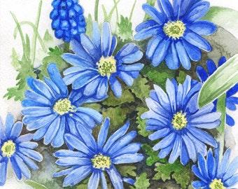 Anemone Blanda, ORIGINAL watercolor painting, FREE shipping