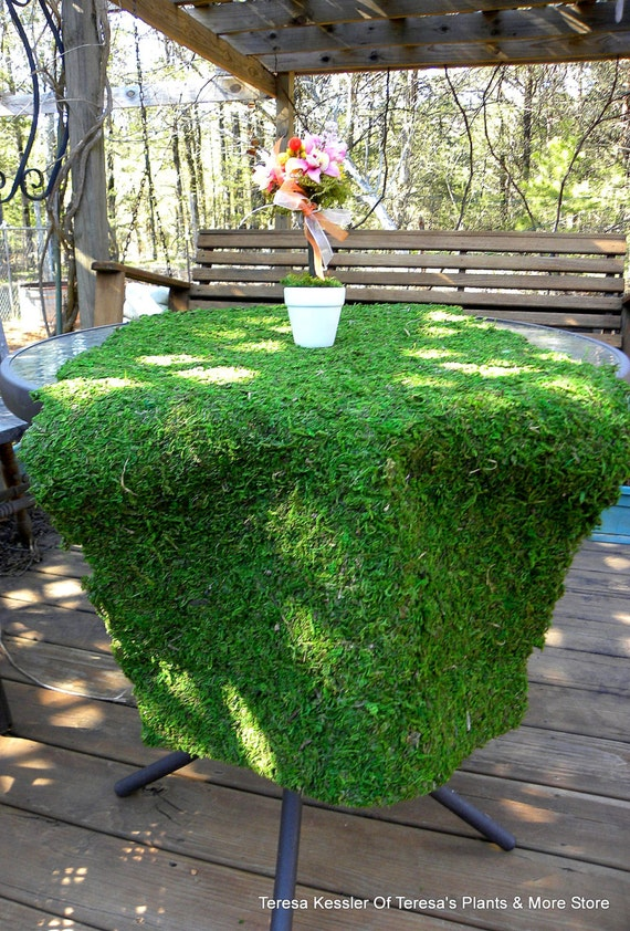 10 Ways To Decorate With Green Moss: BULK Case Of 12 Moss Table Runner-Choose Which Style-Moss