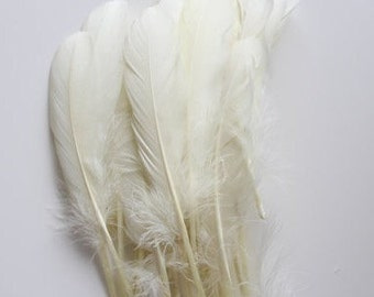"""Off White Goose Nagoire  Feathers, 100 Loose Feathers /5""""long"""