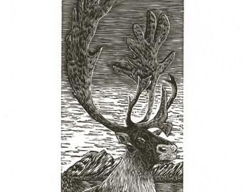 CARIBOU - Limited Edition Engraving Letterpress Print