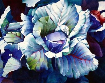 Kauai Cabbage 2- signed limited edition watercolor print