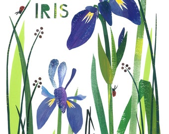Wild Iris - Giclee Print of an Original Collage