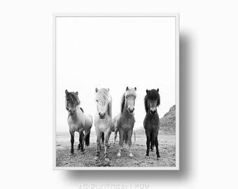 Scandinavian Horses, Iceland Wild Horses, Black White Nordic Woodland Horses Print, Horses, Horses Printable Download, Scandinavian Woodland