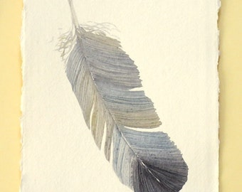 Original watercolour illustration painting of a feather part of a series