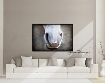 Horse Art, Horse, Equine, Horse Muzzle, Horse Print, Canvas, Horse Canvas