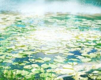 "Lily Pad Print, Nature Photography, Lake Photograph, Landscape Print, Water Print, Florida Art, Green Art, Dreamy Nature Art-""Lily Pad Pond"""