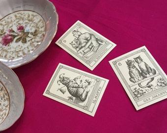 Professional Tarot Reading - spirit work, love, luck, guidence, insight