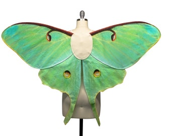 Large LUNA MOTH Fairy Wings Costume, Moth Costume, Made to Order, Butterfly Wings, Butterfly Fairy Costume Adult Size