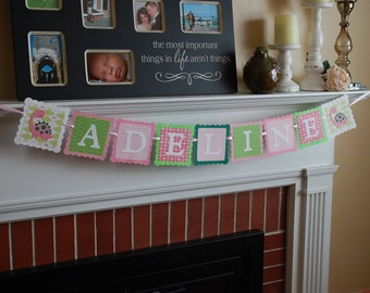 Girl Dinosaur Name Birthday Banner, Dinosaur Name Banner, Girl Dinosaur, Pink Dino, Dinosaur Party