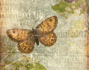 digital scrapbooking paper butterflies printable paper crafts faith christian papers flowers art