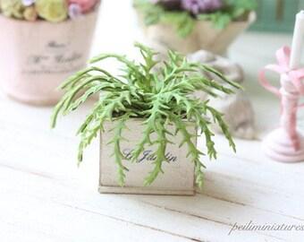 Dollhouse Miniature Plants - Green Fern in Shabby Pot