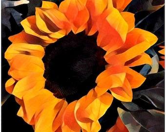 Canvas print: Sunflower