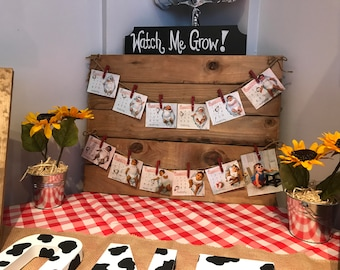 Wood Pallet Picture Display
