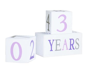 Baby Age Blocks - Photo Prop - Baby Month Blocks - Baby Girl - Nursery Decor - Baby Shower gift - Lilac