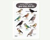 Garden Birds A3 print - i...
