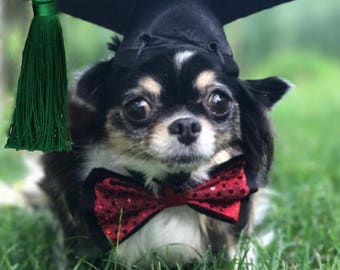 Dog-Cat Graduation Cap/your choice of tassel color