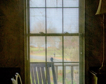 Awaiting Spring : archival quality fine art photography, horizontal format, still life