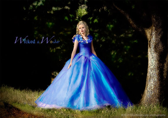 Cinderella in Her Ball Gown